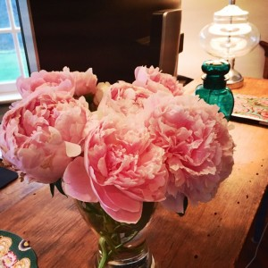 Peonies, girl office